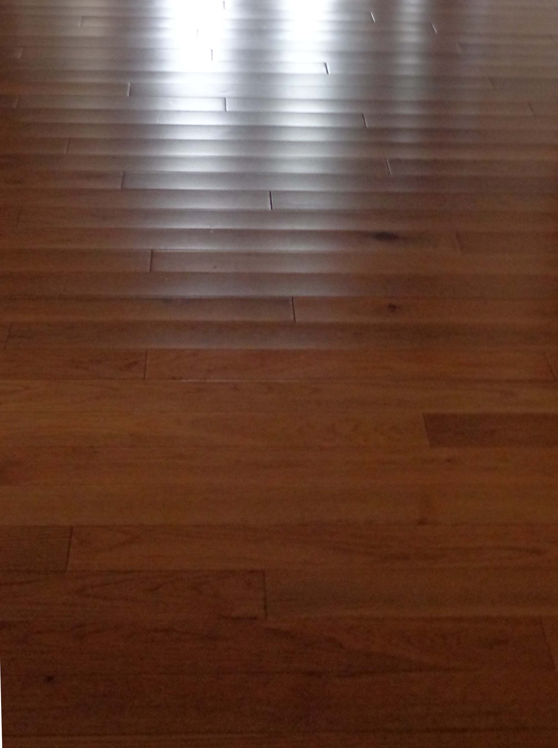 Hardwood Floor With Cupping